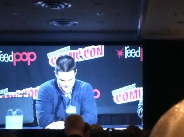 NYCC 2014: Stephen Amell Panel