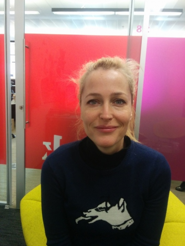 Web chat with Gillian Anderson via TheGuardian