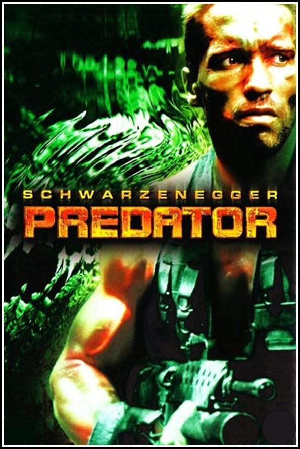 predator19873